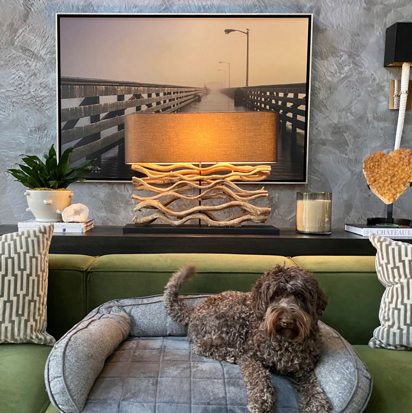 Decorating with Pets Made Simple